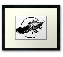 Steg In Space Framed Print