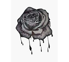 Dripping Rose Photographic Print