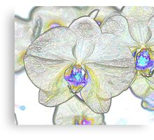 Abstract Beautiful Orchid In Pastel Colors Take 1 Canvas Print