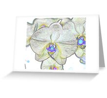 Abstract Beautiful Orchid In Pastel Colors Take 1 Greeting Card