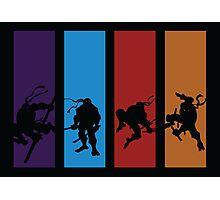 Teenage Mutant Ninja Turtles Photographic Print