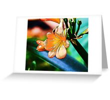 Abstract flowers drawing in pastel colors Take 5 Greeting Card