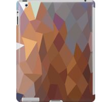 Abstract Geometric Triangles iPad Case/Skin