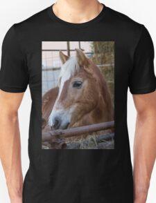 horse in the farm Unisex T-Shirt