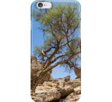The Beauty that is Sesriem Canyon iPhone Case/Skin