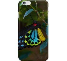 Cairns Birdwing Butterfly iPhone Case/Skin