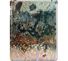 Budump iPad Case/Skin
