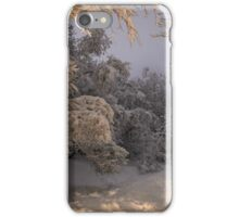 State of winter iPhone Case/Skin