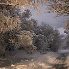 State of winter by Ólafur Már Sigurðsson