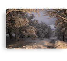 State of winter Canvas Print