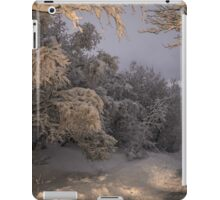 State of winter iPad Case/Skin