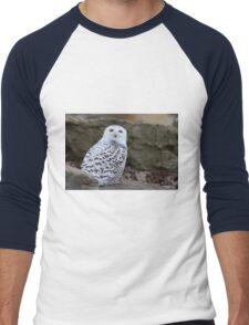 Snowy Owl Men's Baseball ¾ T-Shirt