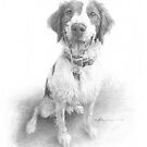 happy spaniel drawing by Mike Theuer