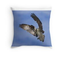 Osprey Wingspan Throw Pillow