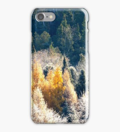 Quebec en beaute iPhone Case/Skin