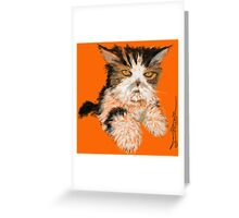 Purrty Persian Greeting Card