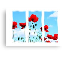 Triptych Poppies Canvas Print