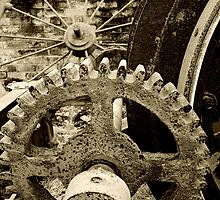 cogs by nikkifallows