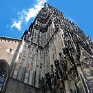 Ulmer Muenster (Cathedral in Ulm/Germany) by Bine