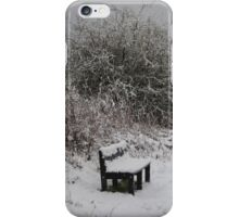 Too Cold For The Derrier iPhone Case/Skin