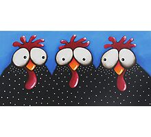 Chickens Love Blue Sky Photographic Print