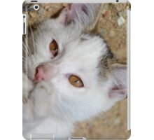 Kittens love to play iPad Case/Skin
