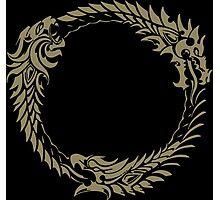 Elder Scrolls Online Logo Photographic Print