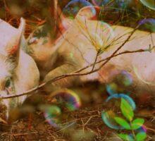Precious Piggy Dreams Sticker