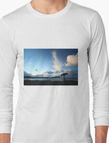 Birsay Whalebone Long Sleeve T-Shirt