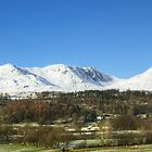The Coniston Fells from Torver by Jamie  Green
