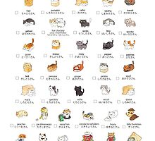 CAT COLLECTER POSTER by Jeremyblog