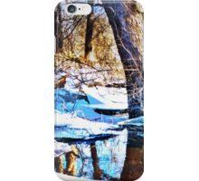 Winter Woodlands iPhone Case/Skin