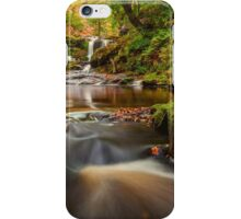 Water Arc Foss/Thomason Foss Falls iPhone Case/Skin
