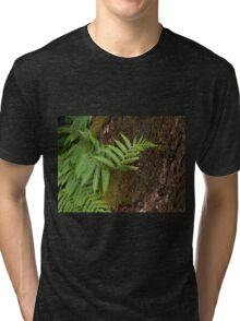 Tree Hugging Tri-blend T-Shirt
