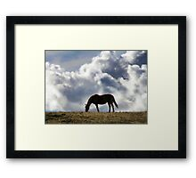Grazing Horse with a Cloud Background Framed Print