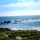 Big Sur by skcele