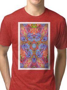 Charybdoscibin Tri-blend T-Shirt