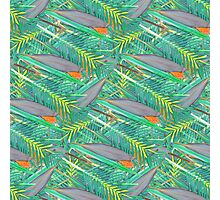 Tropical Weave Photographic Print