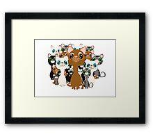 Herd of cats  Framed Print