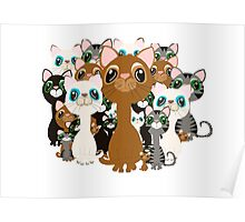 Herd of cats  Poster