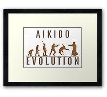 Aikido Evolution Framed Print