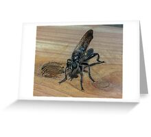 Black Fly Greeting Card