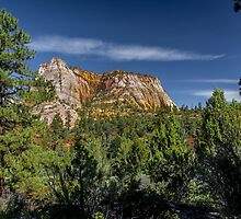 More Zion by barkeypf