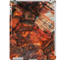 Colours in Nature. iPad Case/Skin