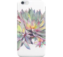 Succulent #2 iPhone Case/Skin