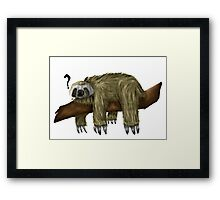 Confused Sloth Framed Print