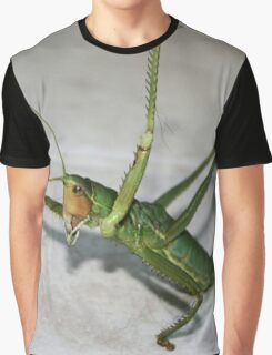 What Katydid Next Graphic T-Shirt