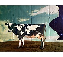 Surreal Bovine Atlas Photographic Print