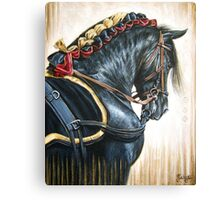Black Andalusian Beauty Canvas Print