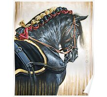 Black Andalusian Beauty Poster